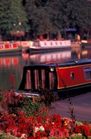 Basin Linking Canal to River Avon, Stratford-on-Avon, England by Nik Wheeler - various sizes