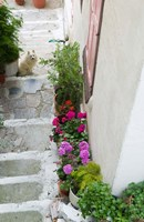 Street Detail, Vathy, Samos, Aegean Islands, Greece Fine Art Print