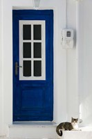 Greece, Aegean Islands, Samos, Door, Cat Fine Art Print