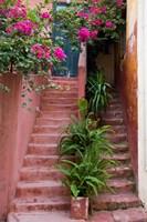 Colorful Stairways, Chania, Crete, Greece Fine Art Print
