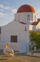 White Pelican Preening, Hora, Mykonos, Greece Fine Art Print