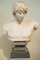 Antinous Bust, Statue, Athens, Greece Fine Art Print