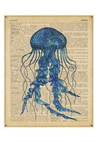 Vintage Jellyfish Fine Art Print