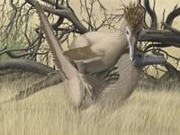 Two Velociraptor's during MatingSseason Fine Art Print