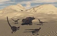 Velociraptors Encircling a  Protoceratops Fine Art Print
