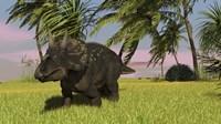 Triceratops Dinosaur 11 Framed Print