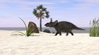 Triceratops Walking along a Prehistoric Beach Landscape Fine Art Print