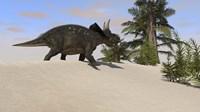 Triceratops Walking along a Prehistoric Landscape Fine Art Print
