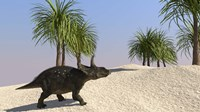 Triceratops Walking in a Tropical Environment 3 Fine Art Print