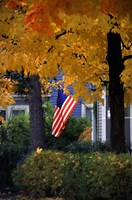 Fall Flag Fine Art Print