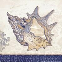 Ocean Conch Framed Print