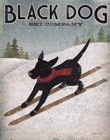 Black Dog Ski Fine Art Print