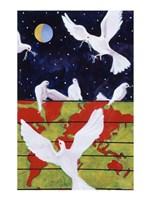 Untitled (Birds at Night) Fine Art Print