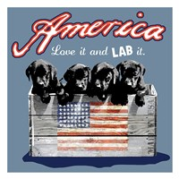 "America by Jim Baldwin - 26"" x 26"" - $29.99"