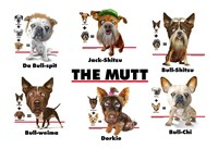 The Mutt Fine Art Print