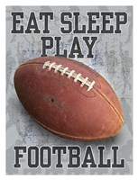 Eat Sleep Play Football Fine Art Print