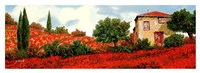 I Papaveri Sulle Colline Fine Art Print