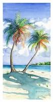 Palm Shadows Fine Art Print