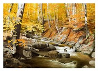 October Creek Fine Art Print