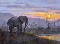 Elephant by Allen Jimmerson - various sizes