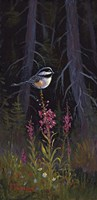 Fireweed Chickadee by Allen Jimmerson - various sizes