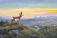 The Lookout by Allen Jimmerson - various sizes
