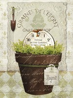 Herb Pot Thyme Fine Art Print
