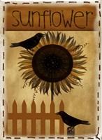 Sunflower by Beth Albert - various sizes