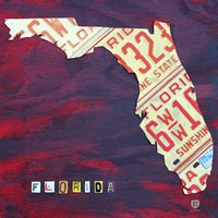 Florida License Plate by Design Turnpike - various sizes