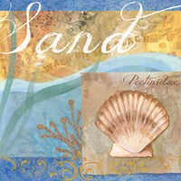 Seashells III by Fiona Stokes-Gilbert - various sizes