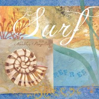 Seashells IV by Fiona Stokes-Gilbert - various sizes