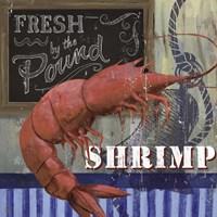 Shrimp Fine Art Print