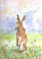 Hare Today Fine Art Print
