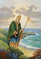 St. Patrick Framed Print