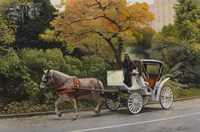 Carriage At Central Park Fine Art Print