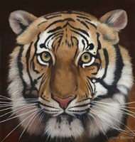 Tiger by John Zaccheo - various sizes, FulcrumGallery.com brand
