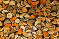 Stacked Firewood, Lithuania Fine Art Print