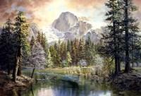 Natures Wonderland Fine Art Print