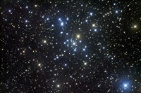 M41, a bright open star cluster located in the Constellation Canis Major by Robert Gendler - various sizes