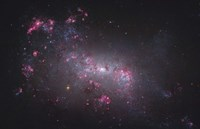 NGC 4449, an irregular galaxy in the Constellation Canes Venatici Fine Art Print