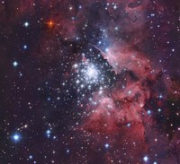 NGC 3603, a giant H-II region in the Constellation Carina Fine Art Print