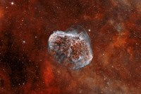 Crescent Nebula with Soap-Bubble Nebula I Fine Art Print
