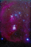 Orion Nebula, Belt of Orion, Sword of Orion and Nebulosity by Alan Dyer - various sizes