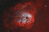 Tadpole Nebula II Fine Art Print