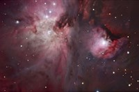 A view of the Trapezium region, which lies in the heart of the Orion Nebula Fine Art Print