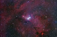 NGC 2264, The Cone Nebula Region Fine Art Print