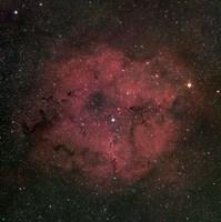 The large IC 1396 emission Nebula complex Fine Art Print