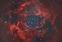 Rosette Nebula I Fine Art Print