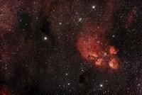 Cat's Paw Nebula in Scorpius Fine Art Print