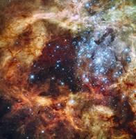 Stellar nursery known as R136 in the 30 Doradus Nebula - various sizes